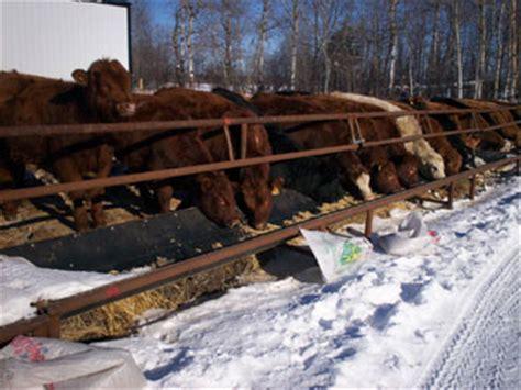 level welding livestock equipment: self feeders emta
