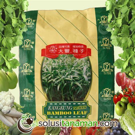 Jual Bibit Kangkung Air benih kangkung bambu 500 gr biji benih sayuran bibit