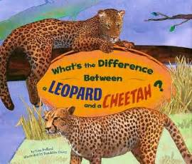 What Is The Difference Between A Leopard And A Jaguar Whats The Difference Between Leopard Jaguar And Cheetah
