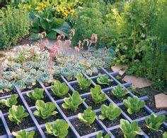 1000 Images About Edible Landscaping On Pinterest Turn Lawn Into Vegetable Garden