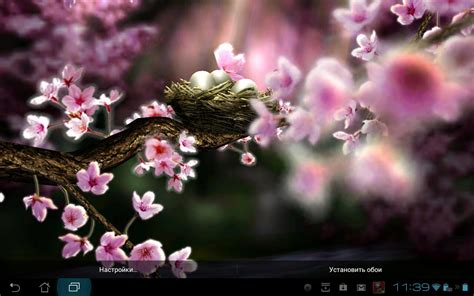 download season zen live wallpaper hd full version android everything about android for free season zen hd android