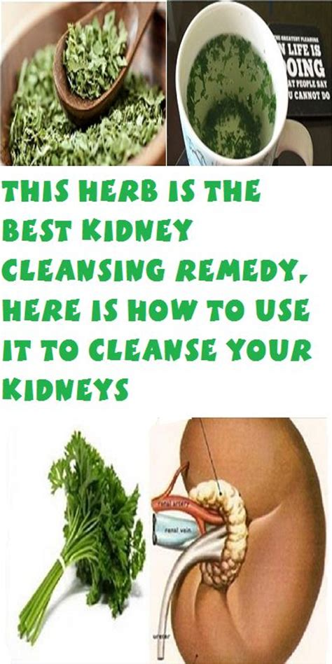 What Is The Best Detox For The by Best Kidney Cleanse Diet Digitaltoday