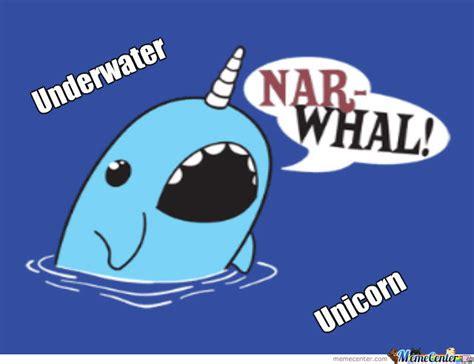 Narwhal Meme - narwhal by adventurebro meme center