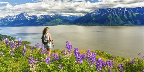 best way to visit alaska things to do in anchorage alaska visit anchorage