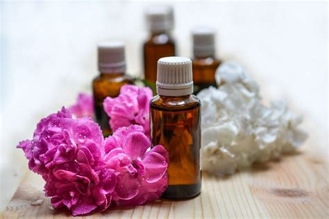 essential for itching the best essential oils for itchy skin wind aromatherapy essential oils