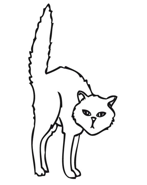 imagenes para dibujar halloween gato asustado para dibujar imagui