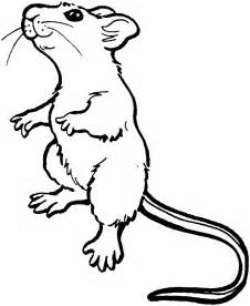 cute mouse coloring images amp pictures becuo