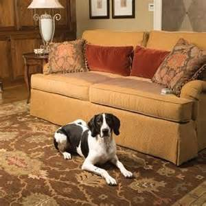 how to keep pets furniture
