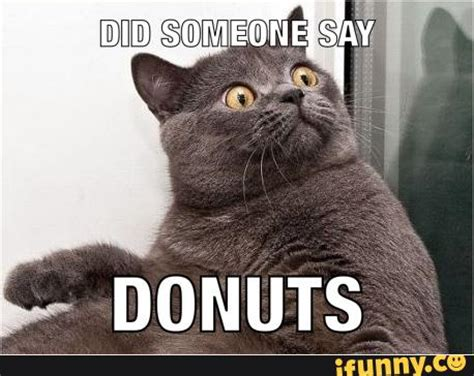 Doughnut Meme - doughnut meme related keywords suggestions doughnut