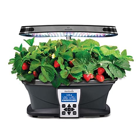 led indoor garden miracle gro aerogarden ultra led with gourmet herb seed
