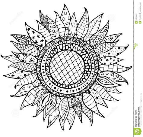 sunflower mandala coloring pages hand drawn zentangle sunflowers ornament for coloring book