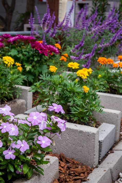 block flower beds pictures to pin on pinsdaddy