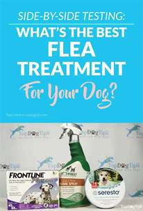 best flea treatment for home 3 best flea and tick treatment for dogs review testing