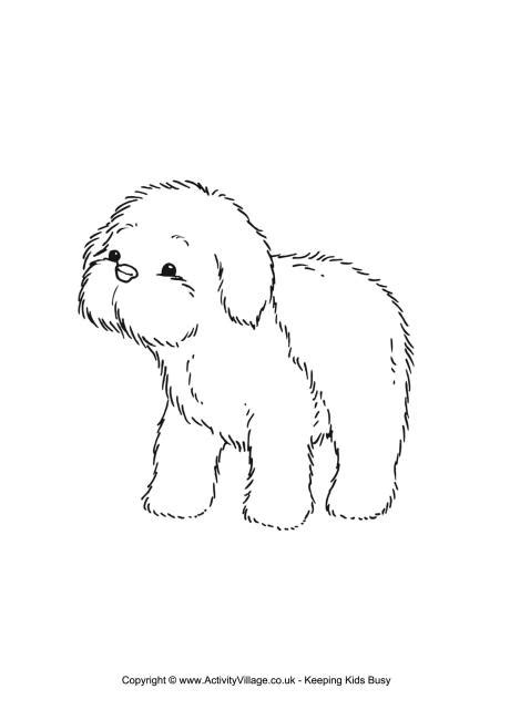 sheep dog coloring page sheepdog puppy colouring page