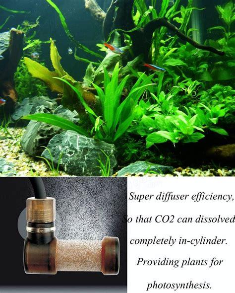Pompa Co2 Aquarium aquarium co2 diffuseur hydroponique atomiseur diffuseur l