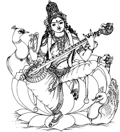 knowing yourself veena and human spinal cord representation