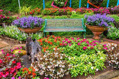 colorful garden 40 colorful garden ideas color explosion