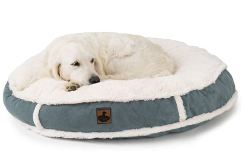 best pet beds best dog bed for chewers dog