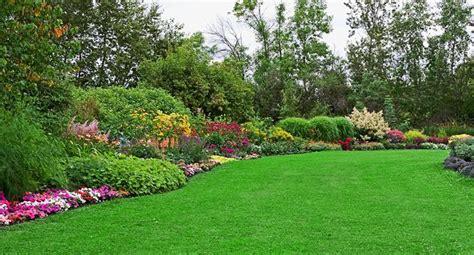 Lawn Care natural lawn care doctor earth perennial garden