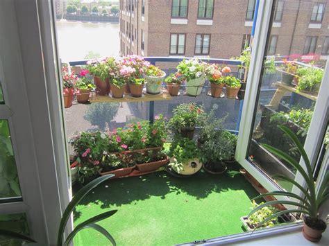 urban oasis balcony gardens  prove green