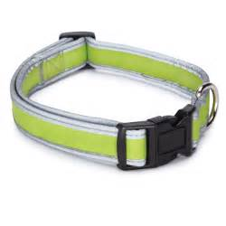 Reflective neoprene dog collar parrot green baxterboo