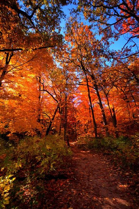 most beautiful places in illinois 13 most beautiful places to visit in illinois page 5 of