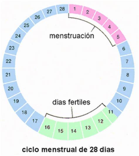Calendario De Ovulacion Y Fertilidad Calendario Ovulaci 243 N Embarazo Demedicina