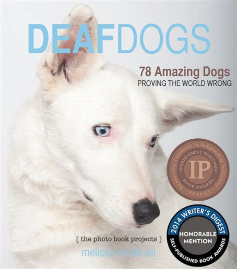 deaf puppy deaf dogs photobook the photo book projects
