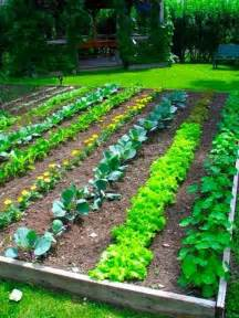 25 garden bed borders edging ideas for vegetable and