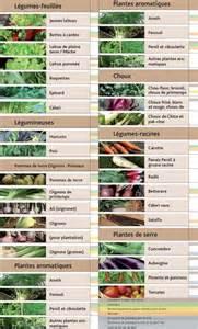 que cultiver au potager au mois de juin jardin