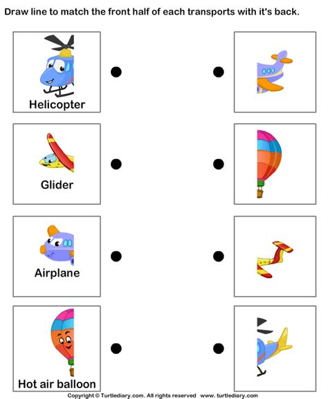 types of air transportation worksheet turtle diary