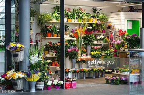 The Flower Shop by Flower Shop Stock Photos And Pictures Getty Images