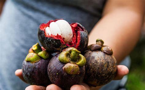 color purple powerful purple superfoods  perk
