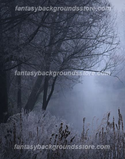 themes for the story winter dreams winter dream land digital backgrounds winter dream land
