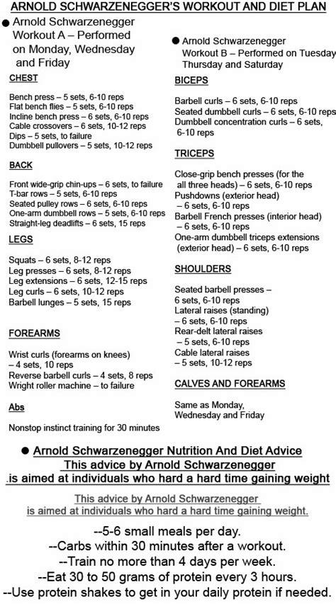 Blueprint arnold diet plans malvernweather Image collections
