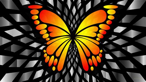 Hd 14 Grey Orange orange butterfly wallpapers barbaras hd wallpapers