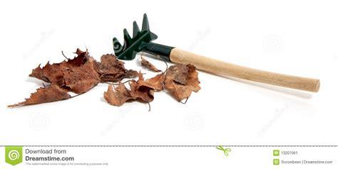 Bilder Aus Getrockneten Blättern by Eine Gartenr 252 Hrstange Mit Getrockneten Bl 228 Ttern Stockbild