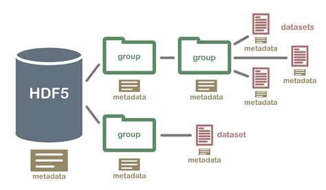 file format hdf5 the content of fast5 files that are generated from minion
