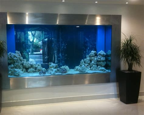 aquarium design ireland considerations of hygiene and aquarium design society of