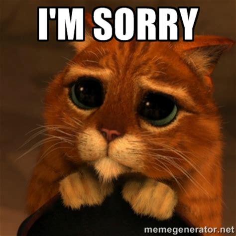 Sorry Meme - i m sorry sad kitten image punjabigraphics com