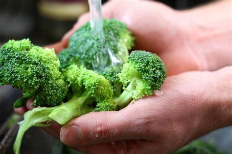 alimenti con nichel elenco alimenti contengono nichel quali evitare in caso di