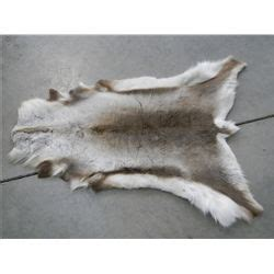 caribou rug caribou rug