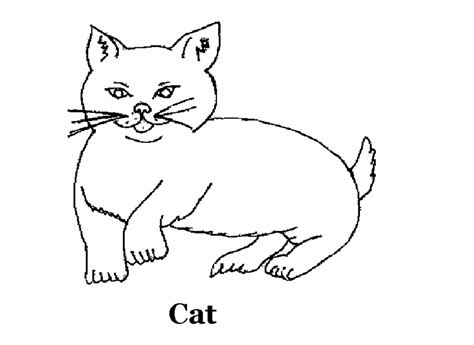 cat coloring sheets cat coloring contest coloring pages for free 2015
