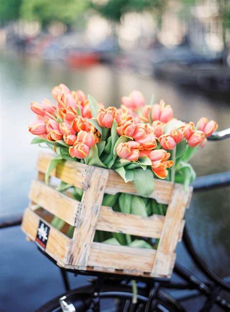 Bloomen Flowers Diy by Blooming Tulip Diy Growing Your Own Garden Ideas