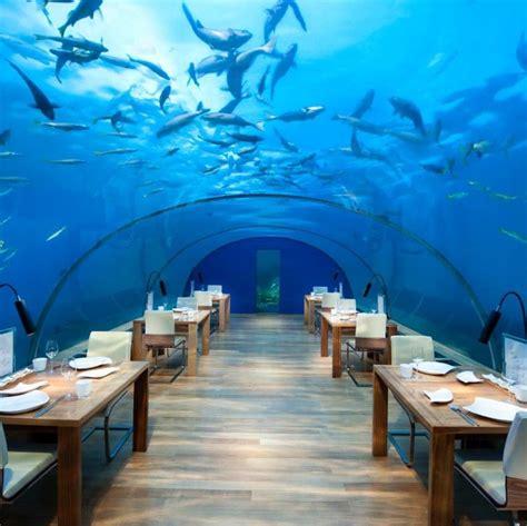 maldives ithaa underwater restaurant overwater villa destination dining ithaa undersea restaurant the maldives