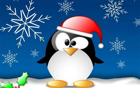 funny penguin on christmas wallpapers and images