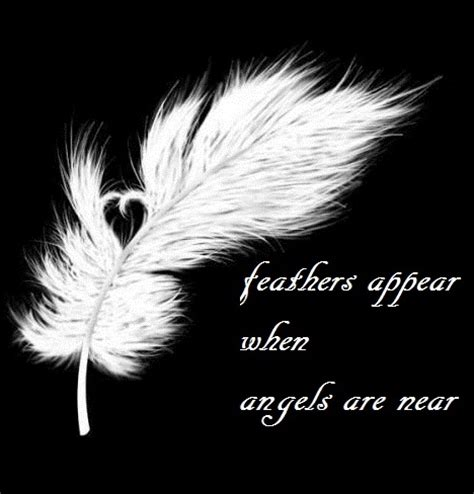 tattoo feather angel images pictures comments graphics scraps for facebook
