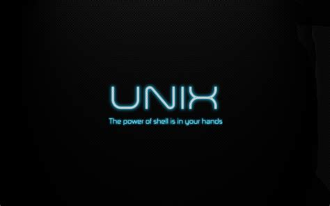 Security Resume Example by Embracing The Unix Terminal Part 7 Paul Ciano