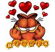 Garfield Cat Gif Paradise Xpx Imagenes De