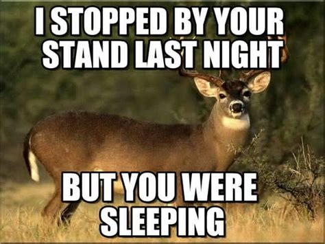 agoda your last night is free the 20 best deer hunting memes so far sayingimages com